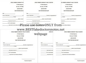 the physician's notes